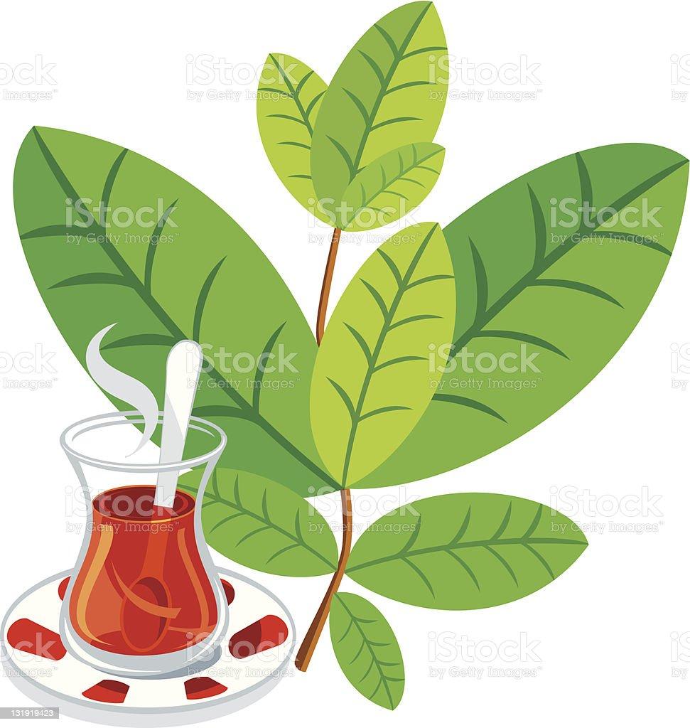 Tea leaf royalty-free stock vector art