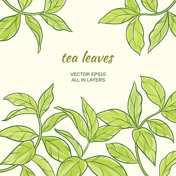 Royalty Free Tea Leaves Clip Art, Vector Images ...