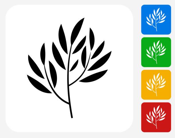 illustrazioni stock, clip art, cartoni animati e icone di tendenza di pianta tè icona piatto di design grafico - camellia sinensis
