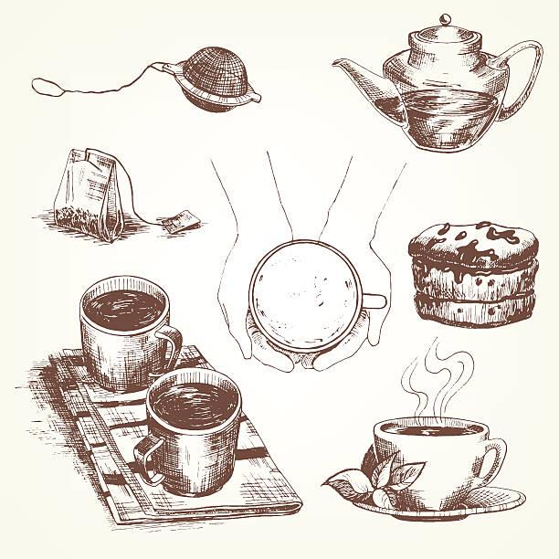 illustrazioni stock, clip art, cartoni animati e icone di tendenza di set da tè - camellia sinensis