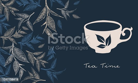 Tea Time. Hand drawn a cup of tea.