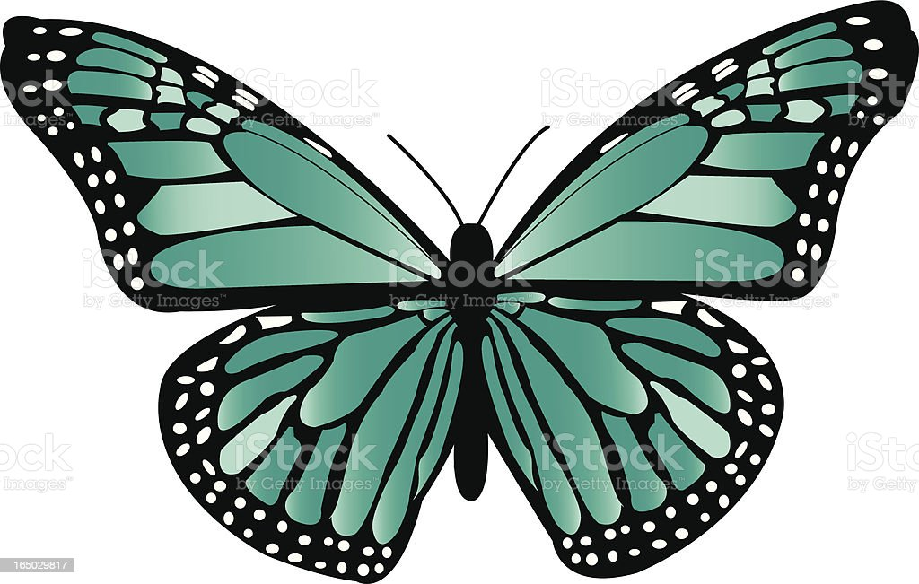 Teal Monarch Butterfly royalty-free stock vector art