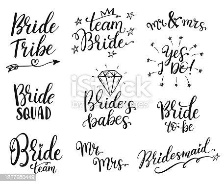 Equipo novia caligrafía letras vector despedida den parte, diseño de boda de despedida de soltera