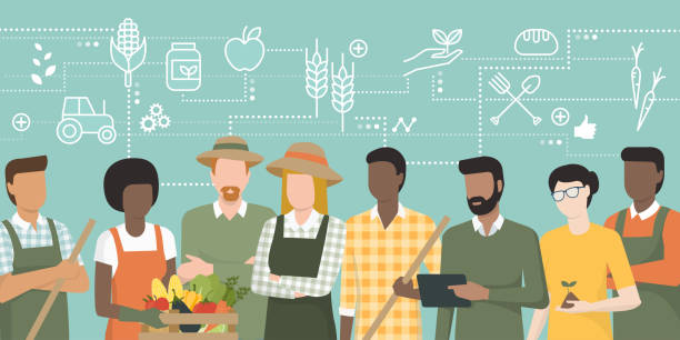 Team of farmers working together Multiethnic team of farmers working together and connecting with a tablet, network of concepts on the top: agriculture and food production farmer stock illustrations