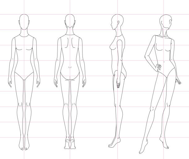 Technical drawing of woman's figure sketch. Vector thin line girl model template for fashion sketching. Woman's body. The position of the hand at the waist. 10 eps design and separate layers. Technical drawing of woman's figure sketch. Vector thin line girl model template for fashion sketching. Woman's body. The position of the hand at the waist. 10 eps design and separate layers. human representation stock illustrations