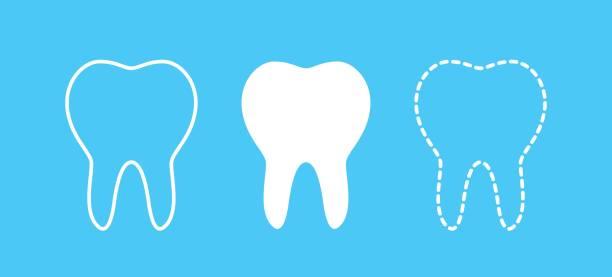 bildbanksillustrationer, clip art samt tecknat material och ikoner med tänder-ikonen - molar