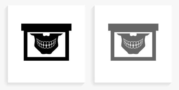 Teeth Scan Black and White Square Icon Teeth Scan Black and White Square Icon. This 100% royalty free vector illustration is featuring the square button with a drop shadow and the main icon is depicted in black and in grey for a roll-over effect. human jaw bone stock illustrations