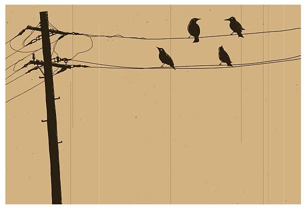 Telegraph pole vector art illustration