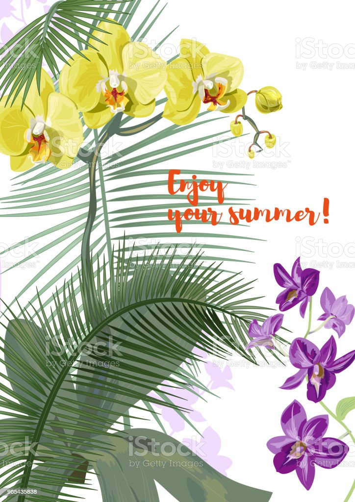 Templat for vacation invitation, vertical card: purple Dendrobium, yellow Phalaenopsis orchid flowers, coconut palm leaves. Tropical plants, white background, vector botanical illustration for design royalty-free templat for vacation invitation vertical card purple dendrobium yellow phalaenopsis orchid flowers coconut palm leaves tropical plants white background vector botanical illustration for design stock vector art & more images of asia