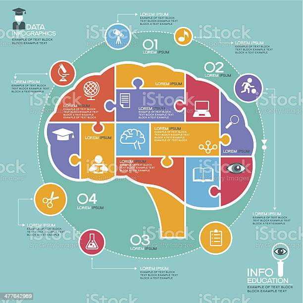 Template abstract human brain surrounded infographic education vector id477642989?b=1&k=6&m=477642989&s=612x612&h=qwtseqgagglieuz0emmchrhmu6rqjgpz4jkx0pgaheo=