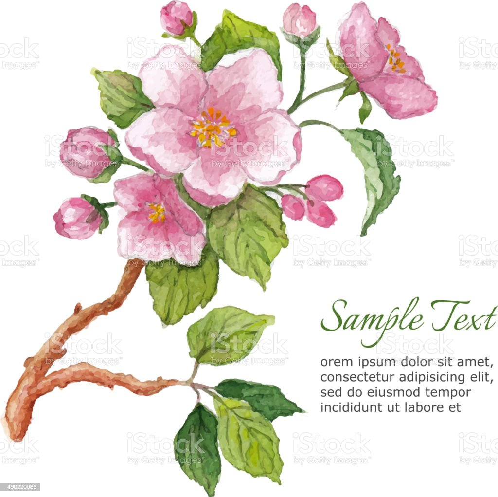 Template for greeting card with watercolor cherry blossoms vector art illustration