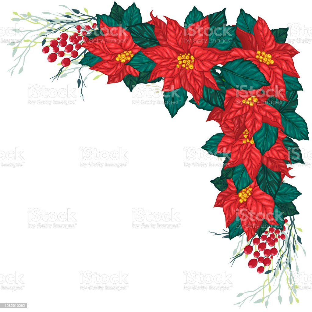 Template Frame Of Poinsettia Flowers And Tree Brunches Stock Illustration Download Image Now Istock