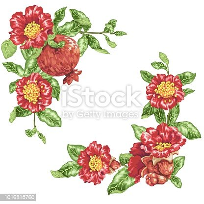 Template in vector illustration with pomegranate flowers in angle decor elements