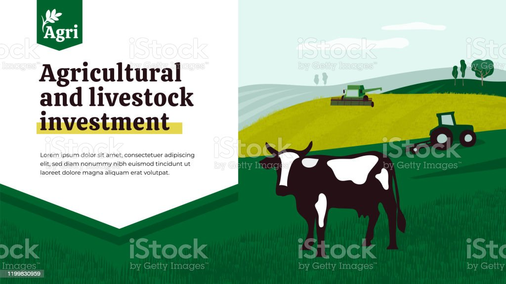 Template Of Agricultural And Livestock Investment Stock Illustration Download Image Now Istock