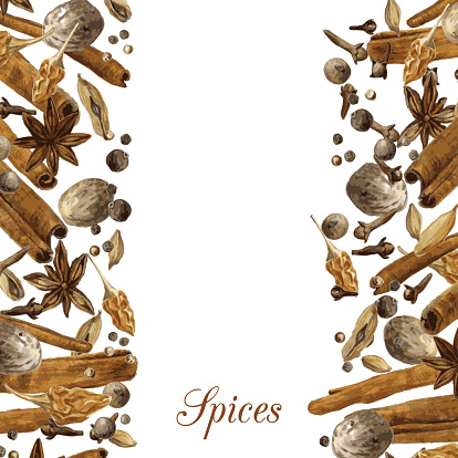 template with spices drawing by watercolor
