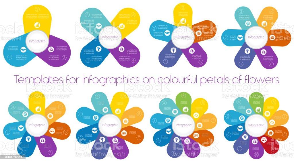 Vetores De Modelos Para Infograficos Em Coloridas Petalas De