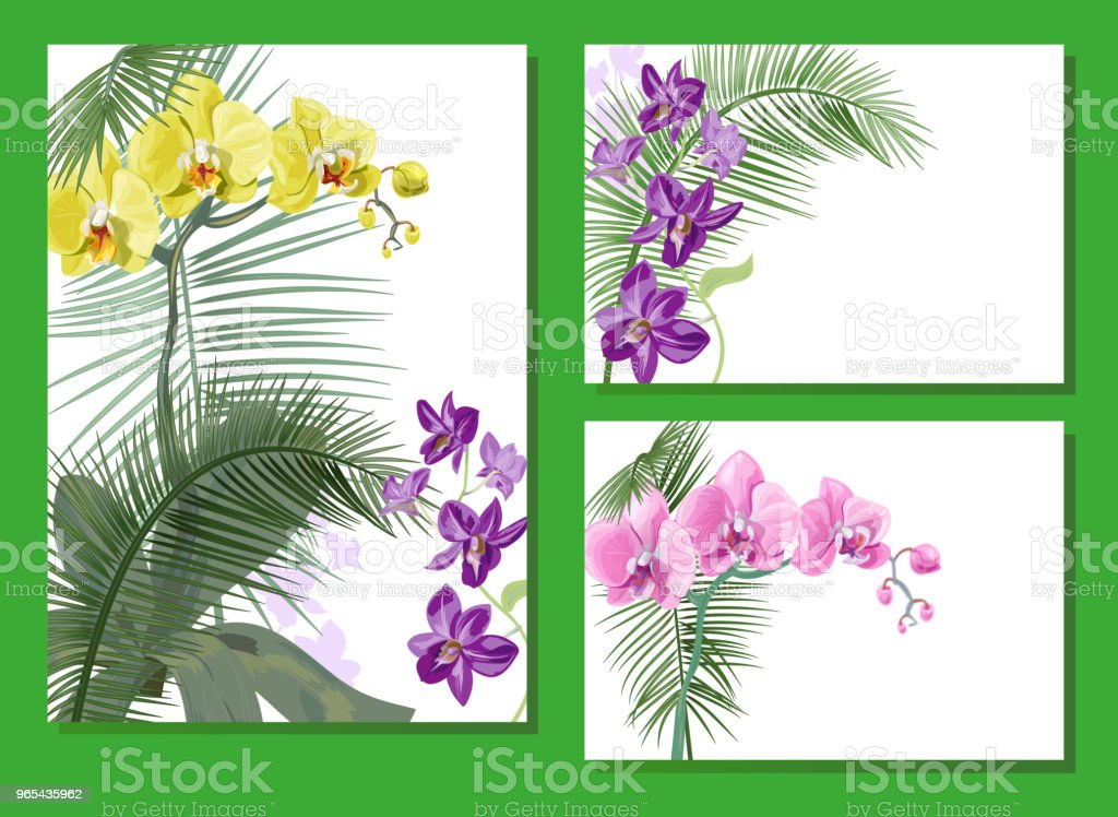 Templates for vacation invitation, vertical, horizontal cards: purple Dendrobium, yellow, pink Phalaenopsis orchid flowers, coconut palm leaves. Tropical plants, white background, vector, A4 royalty-free templates for vacation invitation vertical horizontal cards purple dendrobium yellow pink phalaenopsis orchid flowers coconut palm leaves tropical plants white background vector a4 stock vector art & more images of asia