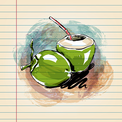 Tender Coconut  Drawing on Ruled Paper