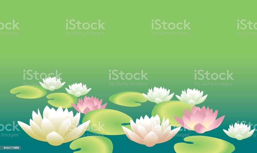 tender elegant white water floral vector illustration for invitation, greeting, poster. water lily, lotus flowers in nature stylized image. vector art illustration