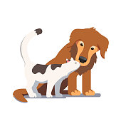 Cat and dog friendship and closeness. Tender kitty sniffing puppy snout. Curious cat snuggling surprised dog. Two domestic animals relationship affection. Flat vector character isolated illustration