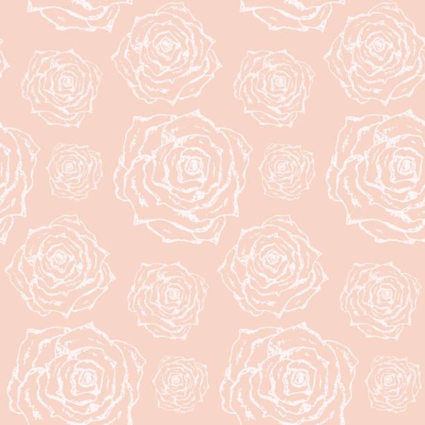 illustrazioni stock, clip art, cartoni animati e icone di tendenza di tender lovely pattern with white outline roses - pesche bambino