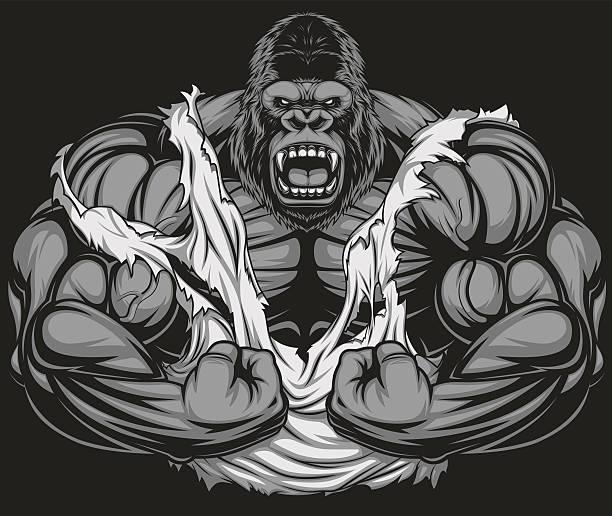 ilustraciones, imágenes clip art, dibujos animados e iconos de stock de terrible gorila atleta - gorila