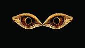 Terrible horrible eyes fantastic animal or bird. Eyes dinosaur or snakes
