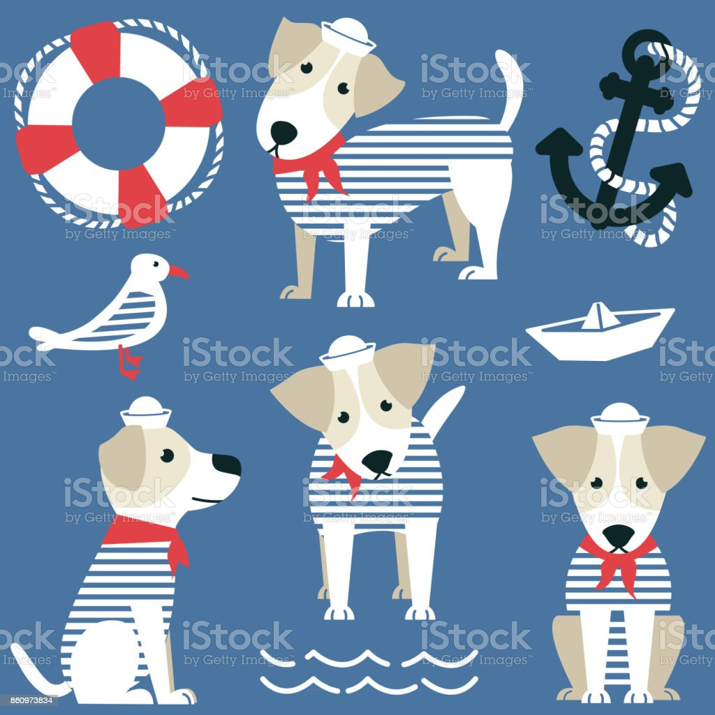 Terrier as a sailor and marine objects ison set.