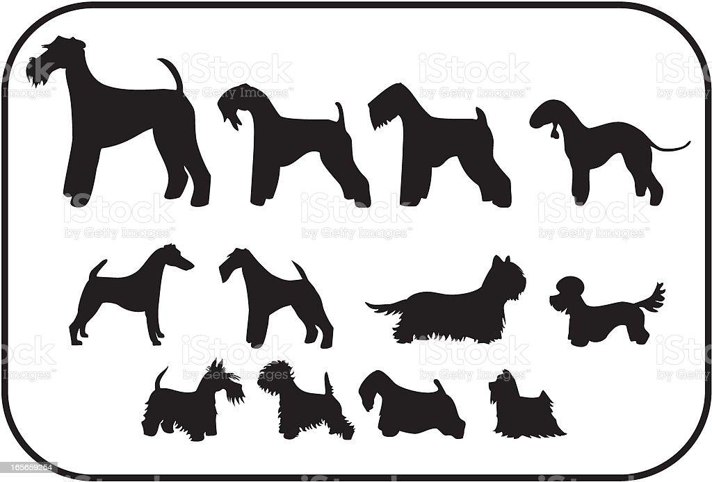 Terriers, Twelve Silhouettes vector art illustration