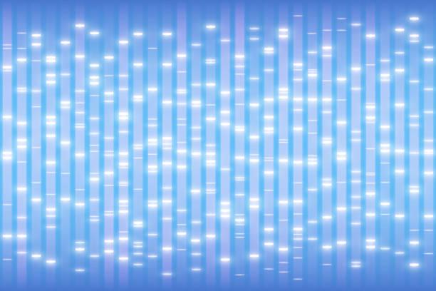 DNA test concept, human genetic profiling background DNA test concept, human genetic profiling background, nucleic acids electrophoresis ladder, genome structure with markers, genetic fingerprinting vector illustration, DNA data genomics stock illustrations