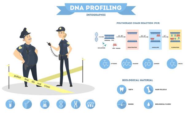 DNA test for police . DNA test for police crime investigation on white. police interview stock illustrations