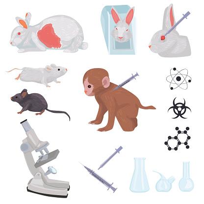 test over animals. set icons isolated on white background.