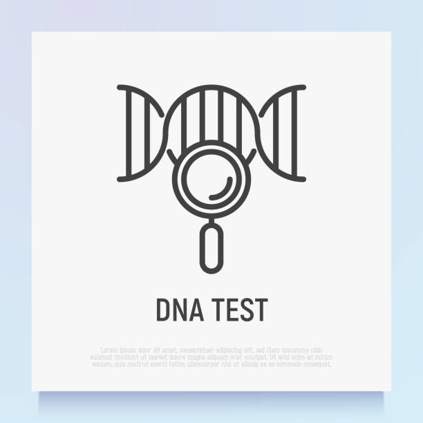DNA test thin line icon. Modern vector illustration of genetic research. DNA test thin line icon. Modern vector illustration of genetic research. dna test stock illustrations