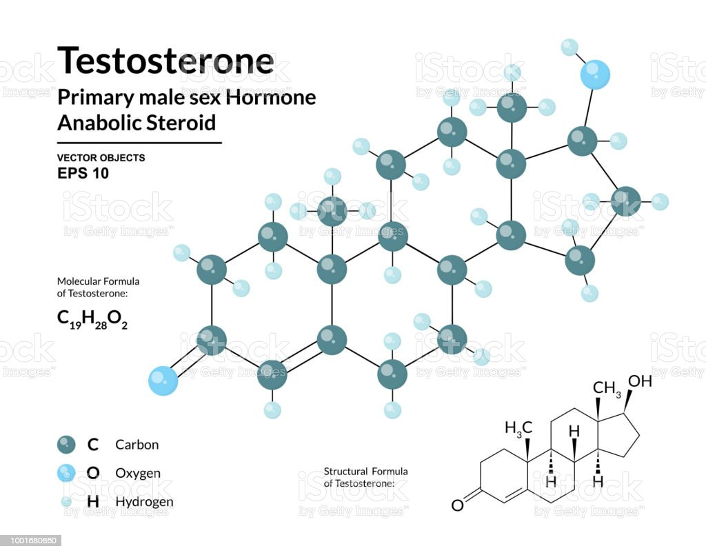 Testosterone Primary Male Sex Hormone Structural Chemical Molecular Oxygen Atom Structure Diagram Stock Photo Formula And 3d Model Atoms