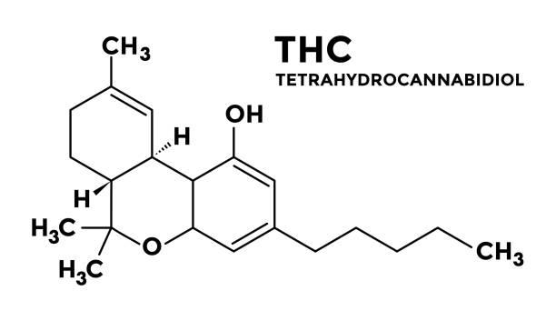 stockillustraties, clipart, cartoons en iconen met -thc - tetrahydrocannabinol structuurformule - fysieke structuur
