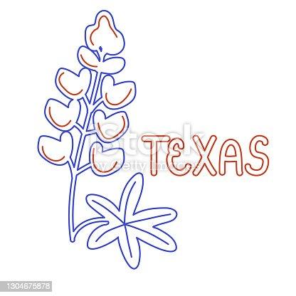 istock Texas flower symbol 1304675878