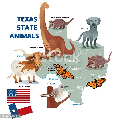 Vector Texas State Animals