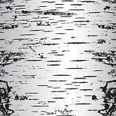 A texture made up from black & white cracks in bark