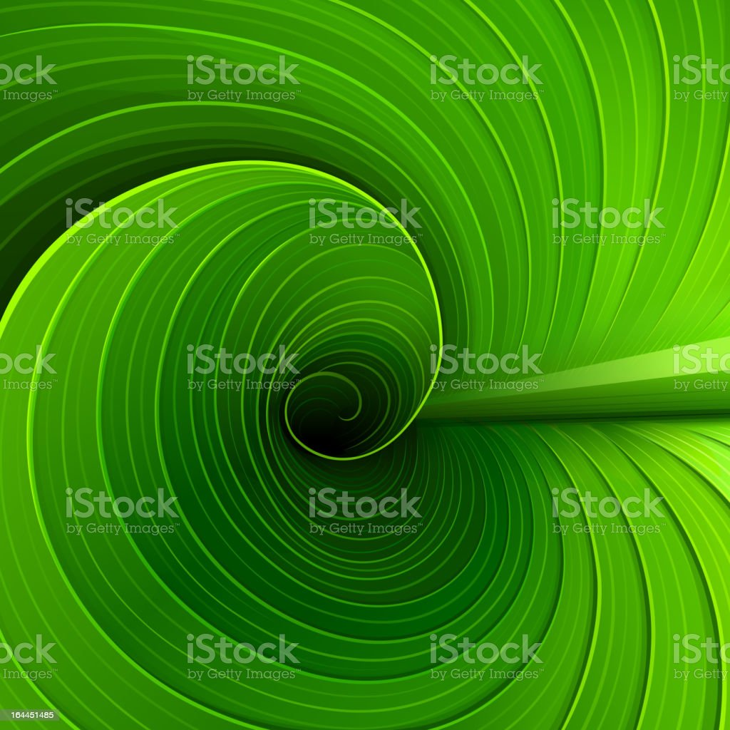 Texture of a green leaf vector art illustration
