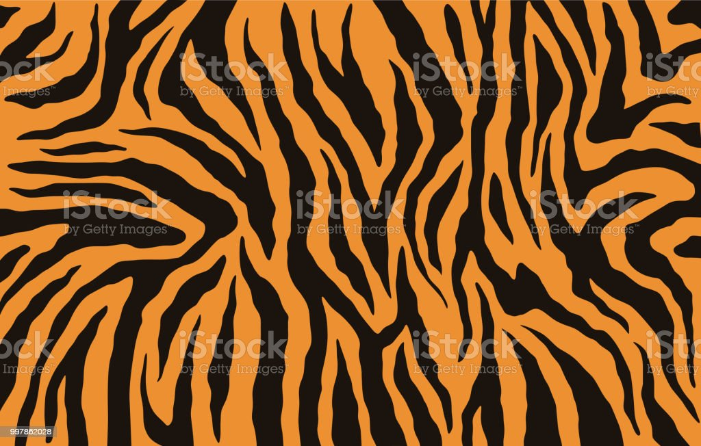 Texture of bengal tiger fur, orange stripes pattern. Animal skin print. Safari background. Vector Texture of bengal tiger fur, orange stripes pattern. Animal skin print. Safari background. Vector Abstract stock vector