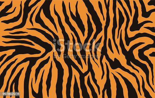 Texture of bengal tiger fur, orange stripes pattern. Animal skin print. Safari background. Vector
