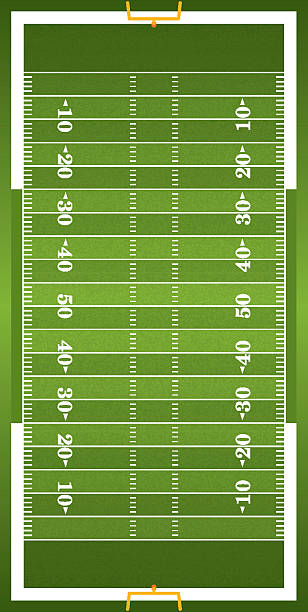 Textured Grass Vertical American Football Field A vertical grass textured American football field illustration. EPS 10. File contains transparencies. ncaa college football stock illustrations