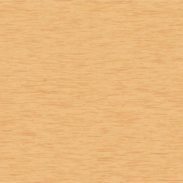 teksturowana powierzchnia dębu liściastego lub bukowa, ilustracja wektorowa jako tło - drewno tworzywo stock illustrations