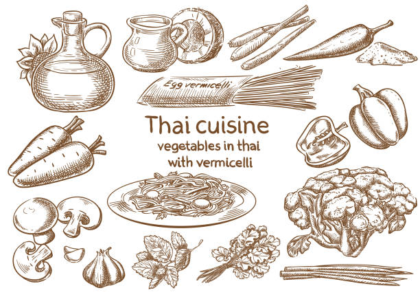 Thai cuisine. Vegetables in Thai with vermicelli ingredients vector sketch. Thai cuisine. Vegetables in Thai with vermicelli ingredients vector sketch. vermicelli stock illustrations