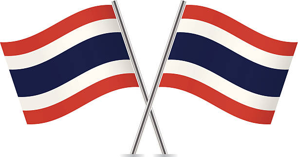 thai flags. vector. - thai flag stock illustrations, clip art, cartoons, & icons
