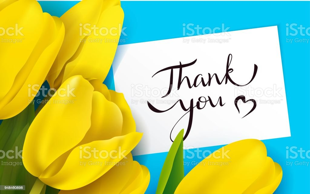 Thank you card with yellow tulips vector art illustration