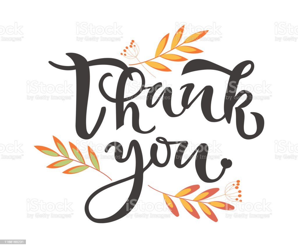 Thank You Hand Drawn Text With Leaves On Background ...