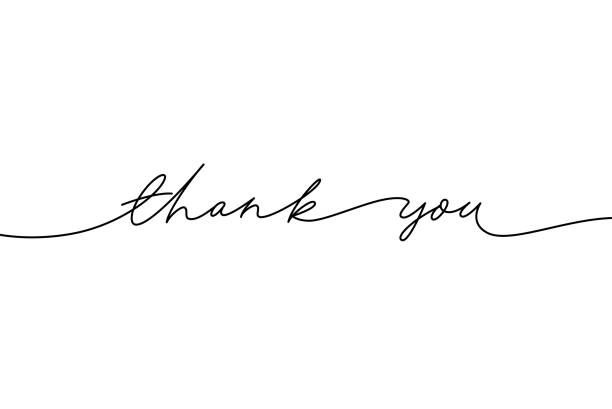 Thank you hand drawn vector modern calligraphy. Thank you handwritten ink illustration. Thank you hand drawn vector modern calligraphy. Thank you handwritten ink illustration, dark brush pen line lettering isolated on white background. Usable for greeting cards, poster, banners, gifts isolated color stock illustrations