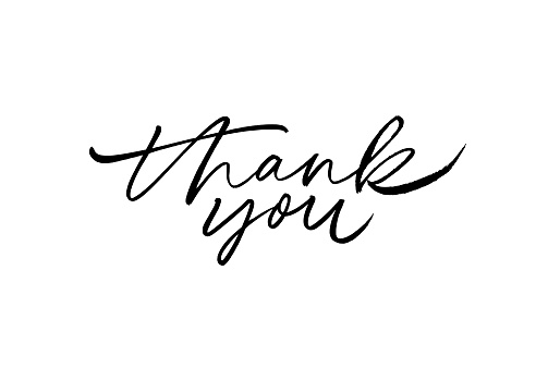 Thank you hand drawn vector modern calligraphy. Thank you handwritten ink illustration.