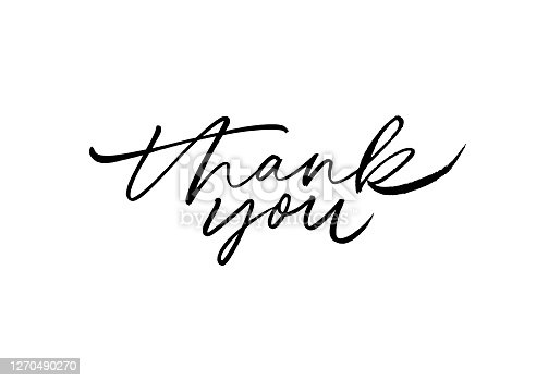 Thank you hand drawn vector modern calligraphy. Thank you handwritten ink illustration, dark brush pen lettering isolated on white background. Usable for greeting cards, poster, banners, gifts
